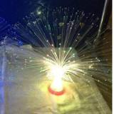 Fiber Optic Light Up LED 10